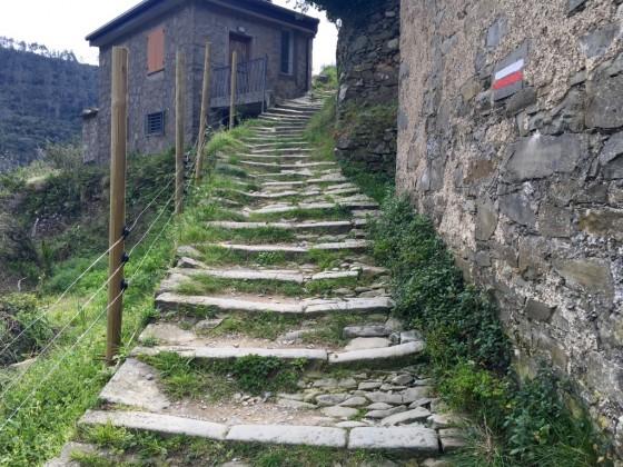 path up2