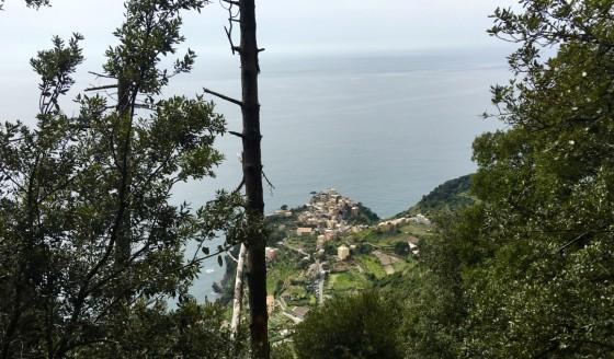 Corniglia above