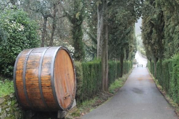 Entry to Vignamaggio