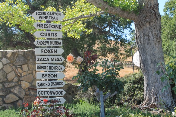 Foxen Canyon wine trail