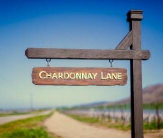 Cambria Winery Google+ Image 20