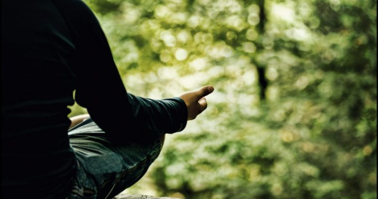 meditation revue de presse