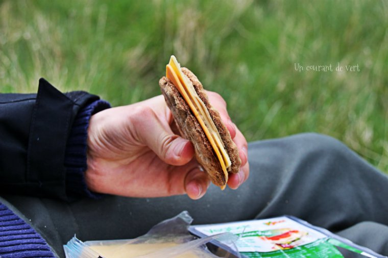 sandwich vegane