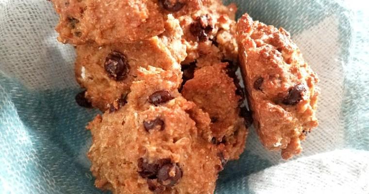 Biscuits végétaliens à l'okara d'avoine