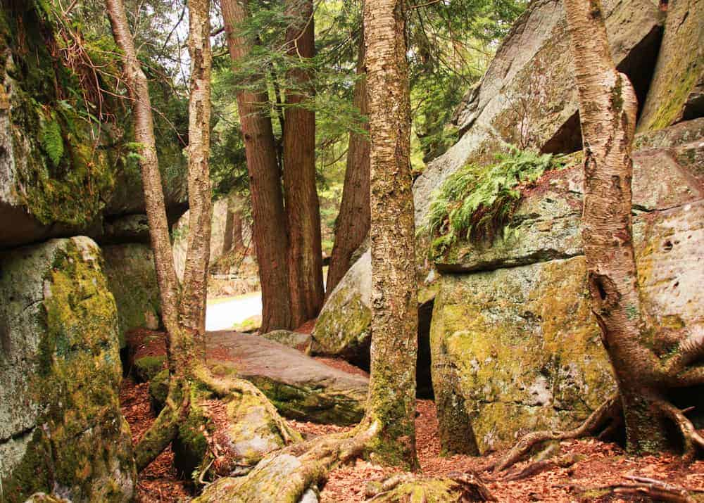 Visiting Bilger's Rocks in Clearfield County, Pennsylvania.