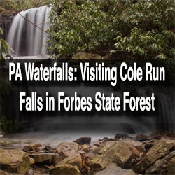 Cole Run Falls in Forbes State Forest, Pennsylvania