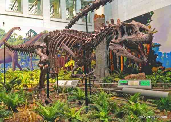T-rex at the Carnegie Museum - Pittsburgh Facts