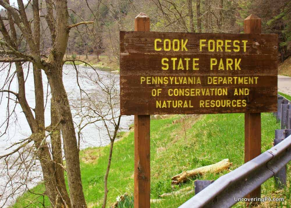 5 Fantastic Reasons to Visit Cook Forest State Park in Pennsylvania
