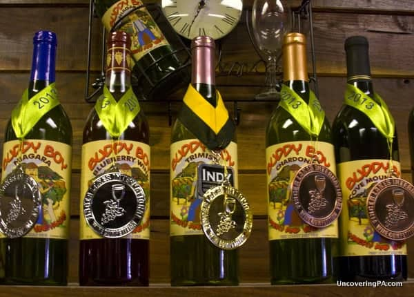 Buddy Boy Winery and Vineyard in Duncannon, PA