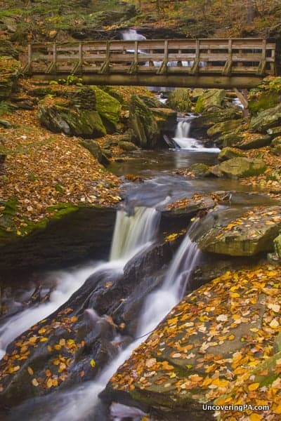 The Falls Trail in Ricketts Glen State Park in PA