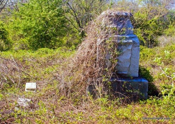An overgrown grave in Mount Moriah Cemetery, Philadelphia, PA