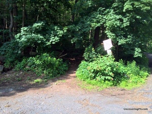 Trail to Hawk Rock Overlook in Ducannon Pennsylvania.