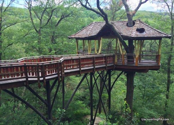 David Wenzel Tree House in Scranton's Nay Aug Park