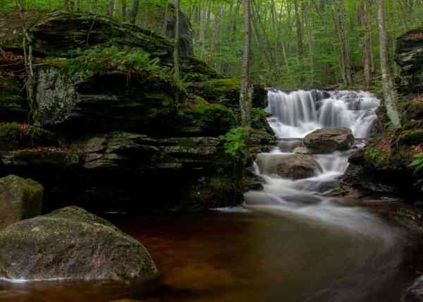 Miners Run Waterfalls in Lycoming County, PA