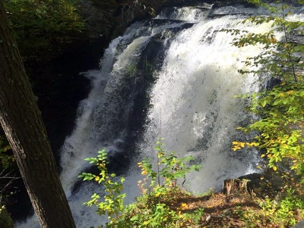 Top of Fulmer Falls, George Childs Park
