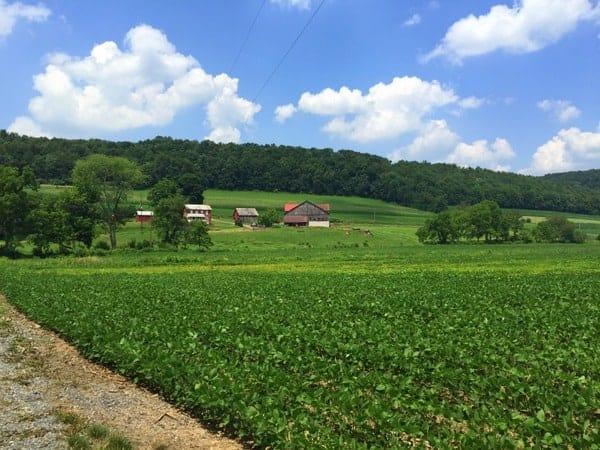 The beautiful valley near Lairdsville Covered Bridge near Muncy, Pennsylvania