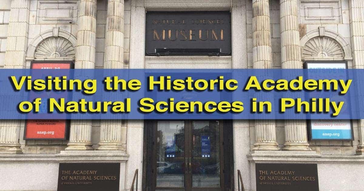 Groupon Natural Science Museum Philadelphia
