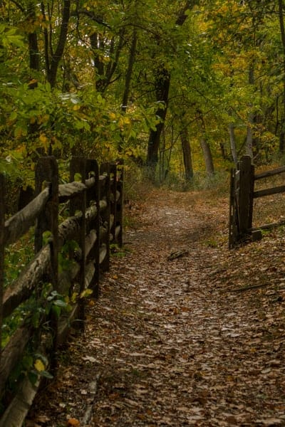 Hiking in Bartram's Garden in Philadelphia, Pennsylvania