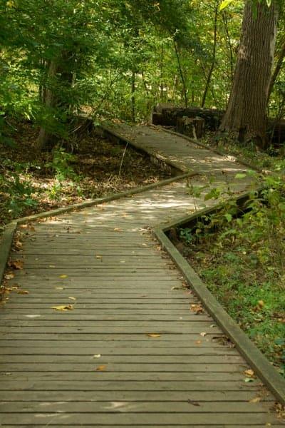 Boardwalk in Bartram's Garden in Philly