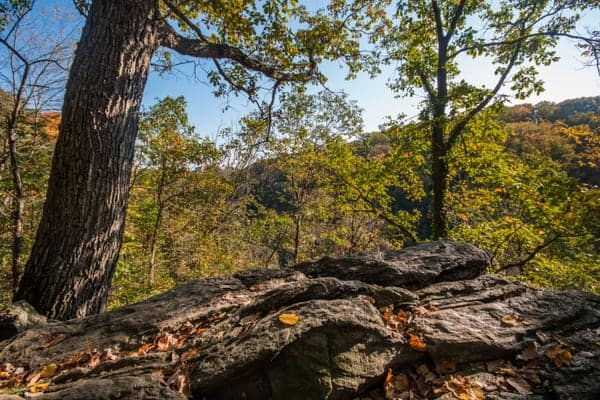 Things to do in Wissahickon Gorge: Lover's Leap