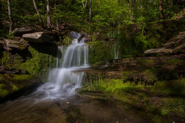 Waterfalls in PA Grand Canyon: Stone Quarry Run Falls