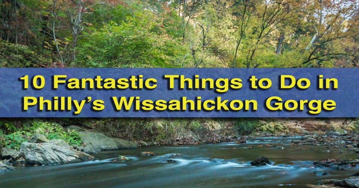 Things to do in Wissahickon Gorge in Philadelphia, Pennsylvania