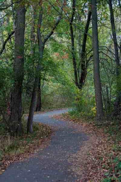 Hiking at the John Heinz National Wildlife Refuge in Philadelphia, Pennsylvania.
