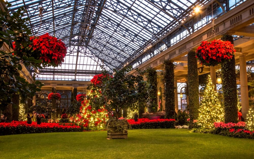 Longwood Gardens Conservatory At Christmas