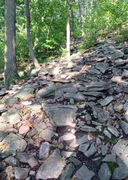 Rocky Mount Nittany hiking trail