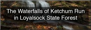 Waterfalls of Ketchum Run Gorge