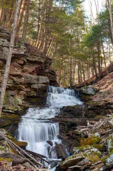 Alpine Falls on the Loyalsock Trail