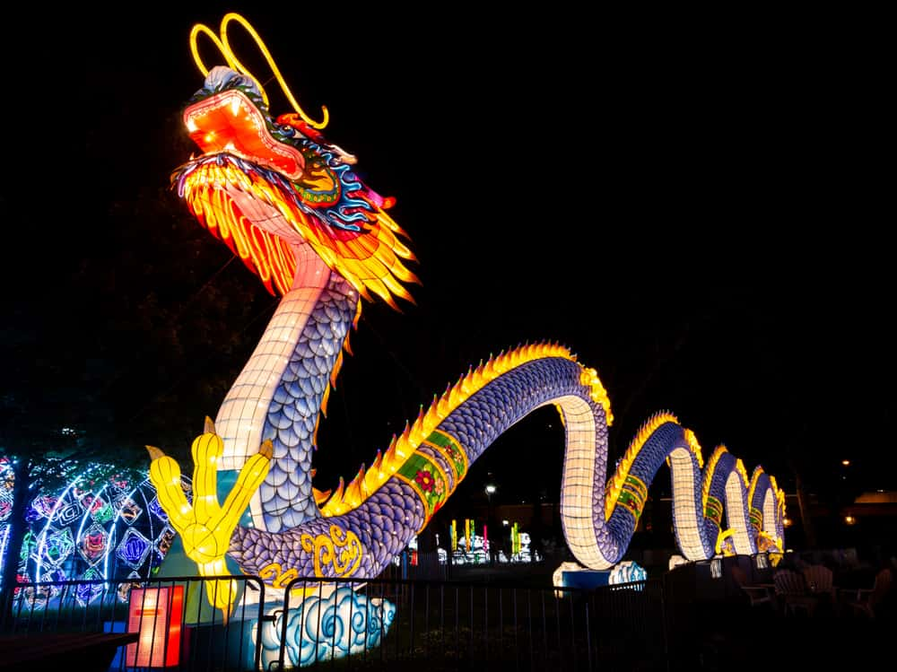 Dragon at the Philadelphia Chinese Lantern Festival