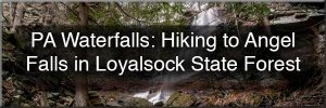 Angel Falls in Loyalsock State Forest