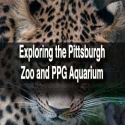 Pittsburgh Zoo and Aquarium