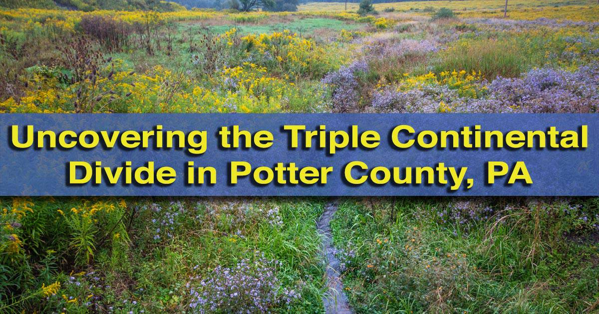 The Triple Continental Divide in Potter County, PA