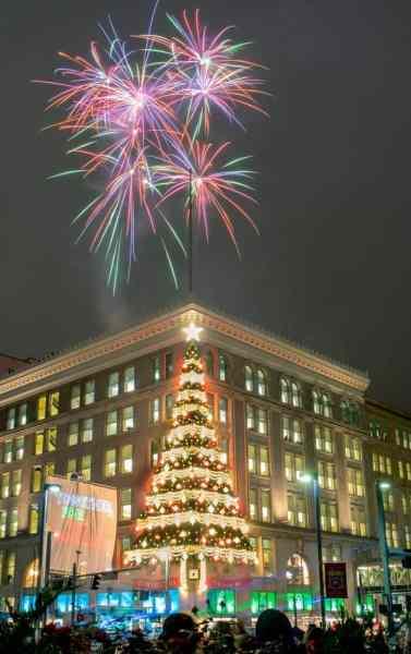 Horne's Tree Fireworks on Light Up Night in Pittsburgh, Pennsylvania