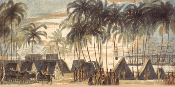 cover detail from Cattle Colonialism: An Environmental History of the Conquest of California and Hawai'i, by John Ryan Fischer