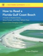 How to Read a Florida Gulf Coast Beach: A Guide to Shadow Dunes, Ghost Forests, and Other Telltale Clues from an Ever-Changing Coast, by Tonya Clayton