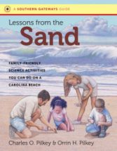 Cover image of Lessons from the Sand