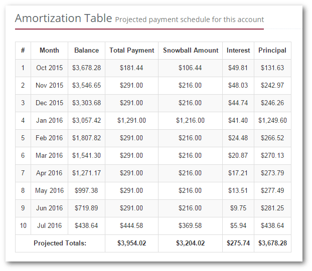 account amortization schedule