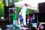 Dexta Daps takes flight at The Grace Jamaican Jerk Festival New York - Undefinable Vision