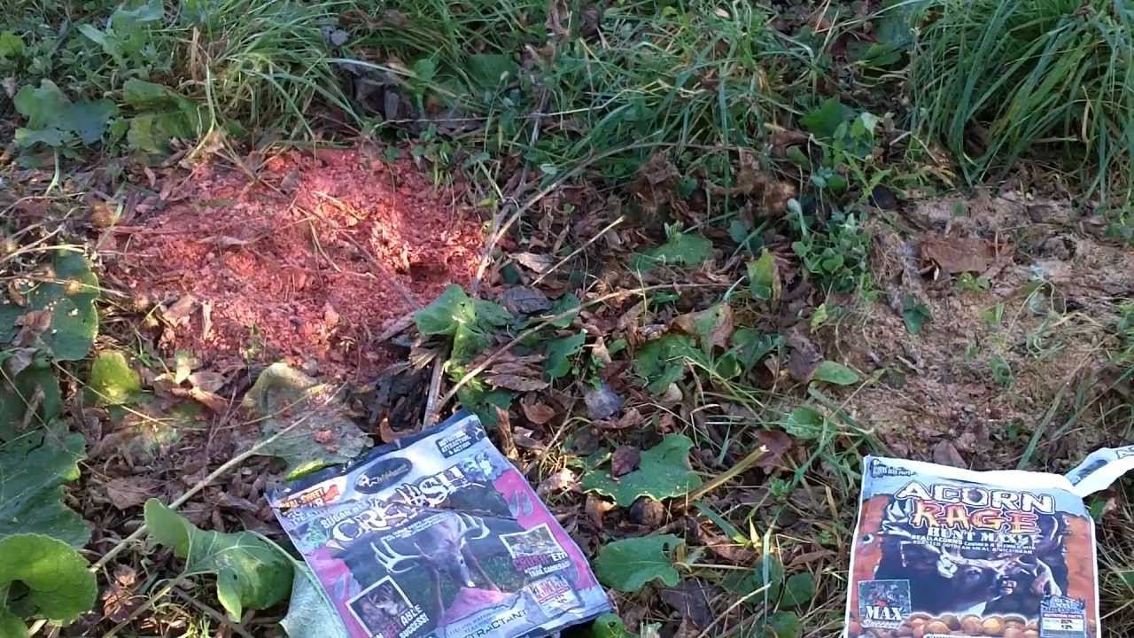 Place of Setting the Deer Attractant