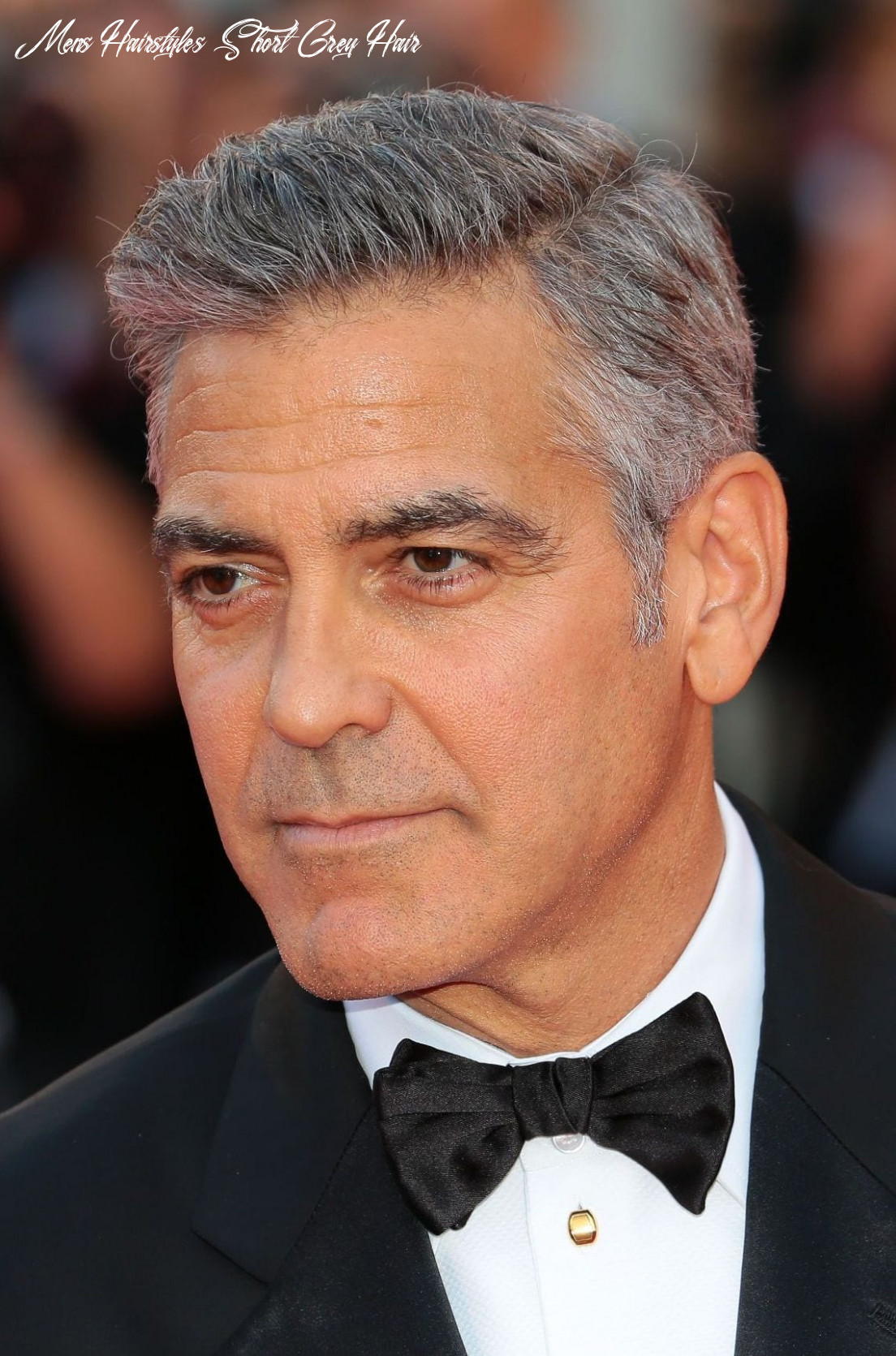 8 Glorious Hairstyles for Men With Grey Hair (a.k.a. Silver Foxes)