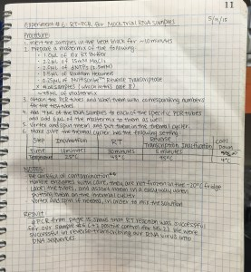 A sample entry in my lab notebook on RT-PCR (experiment done on 5/9/2015)