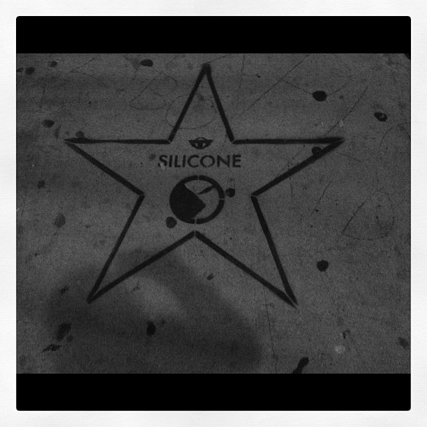 Hollywood Walk Of Shame 3