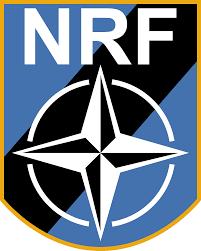 Article 1 NRF