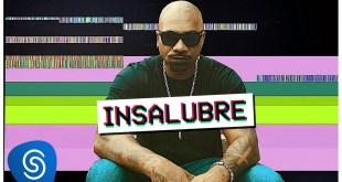 """Dj Caique e MV Bill lançam o single """"Insalubre"""""""