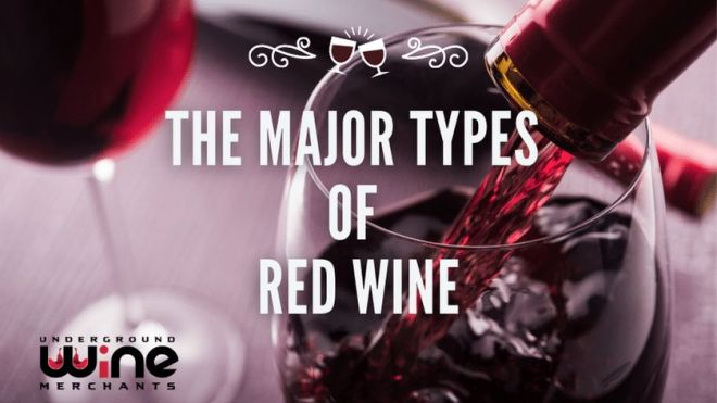 The Major Types  of  Red Wine