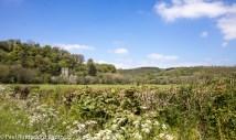 Across the fields to Llawhaden's church