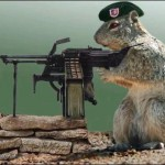 Squirrel with a gun